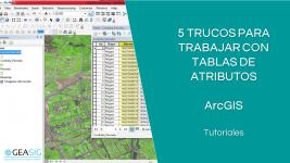 5 trucos de ArcGIS para tablas de atributos
