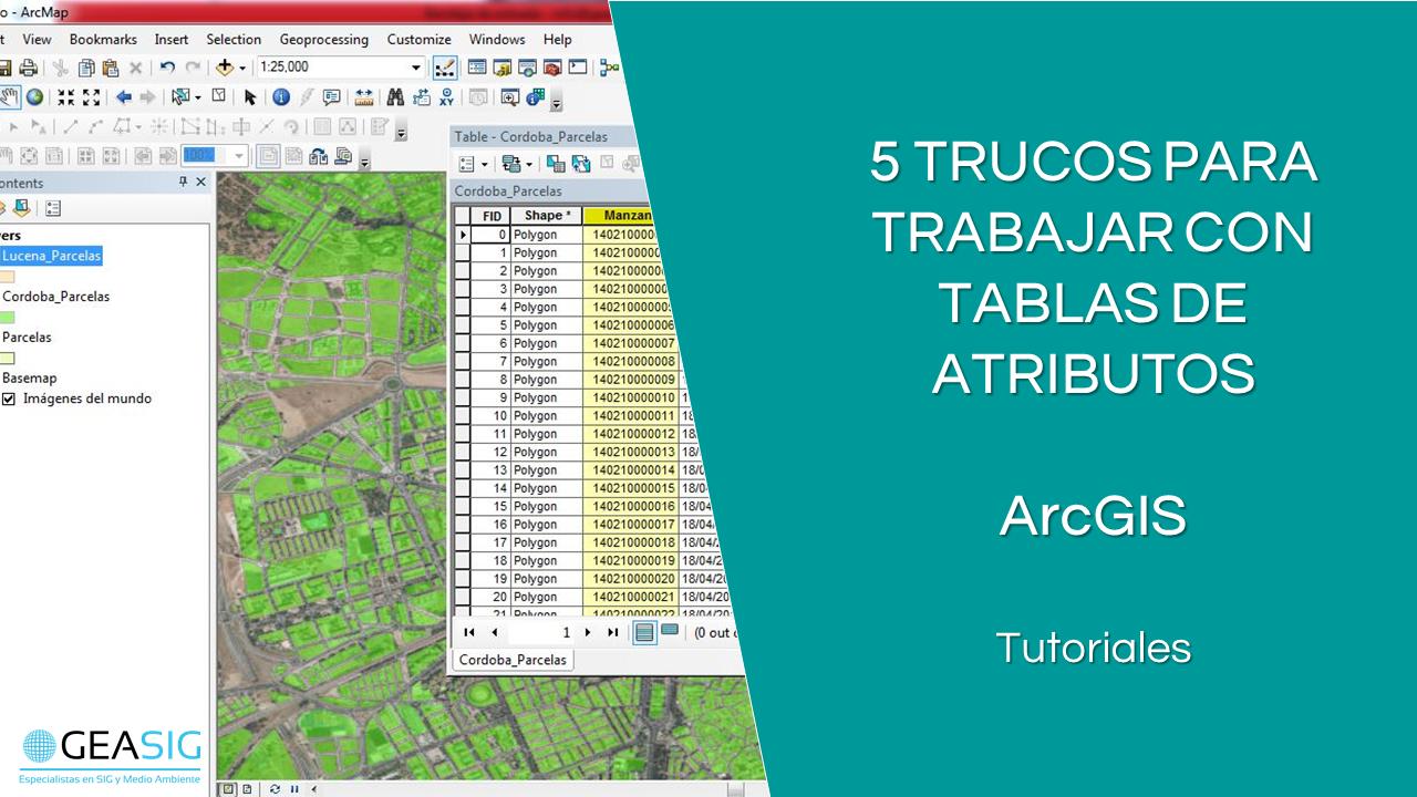 En este momento estás viendo 5 trucos de ArcGIS para tablas de atributos