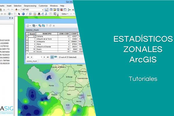 Estadísticos Zonales con ArcGIS