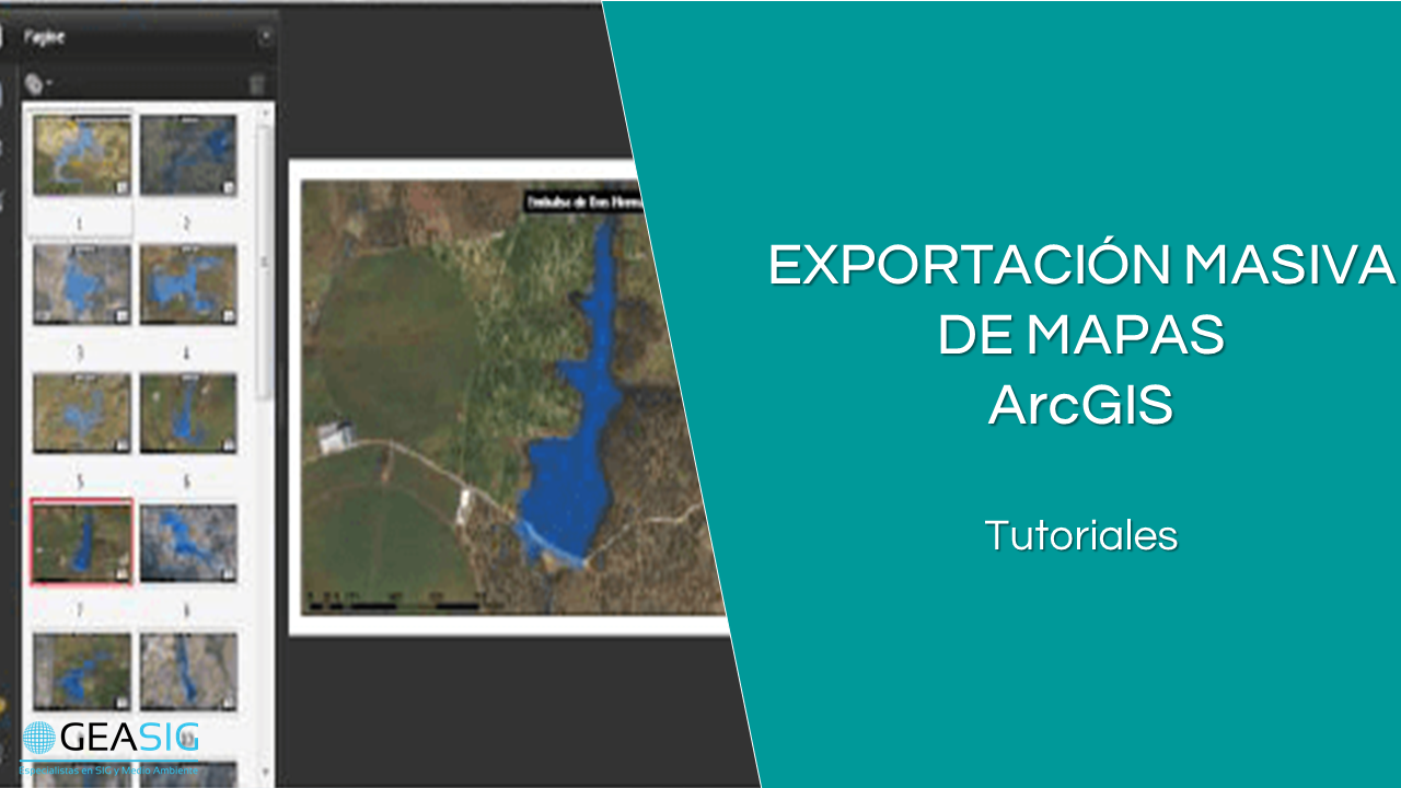 En este momento estás viendo Truco ArcGIS: Exportación Masiva de Mapas con Data Driven Pages